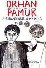 A stranger In My Mind -