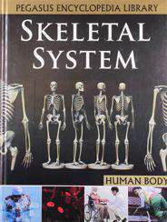 Pegasus Encyclopedia Library Skeletal System