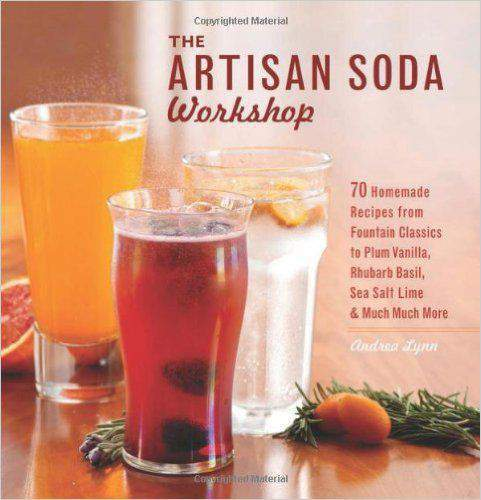 The Artisan Soda Workshop 75 Homemade Recipes from Fountn Classics to Rhubarb BasilSea Salt LimeColdBrew Coffee and Much Much More