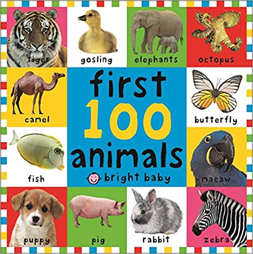First 100 Animals (Bright Baby First 100) Hardcover