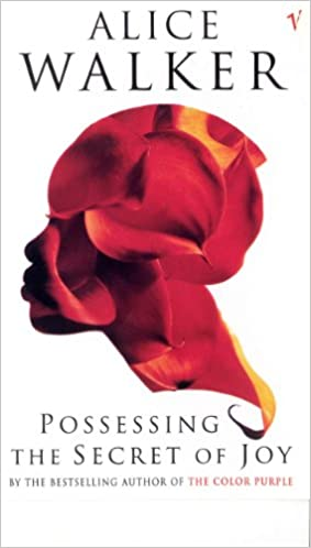 Possessing The Secret Of Joy  -  Paperback