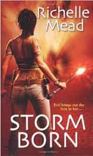 Storm BornDark Swan Book 1