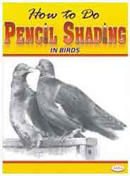 How To Do Pencil Shading In Birds