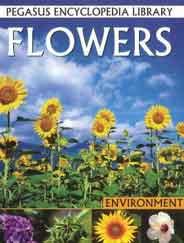 Pegasus Encyclopedia Library Environment Flowers