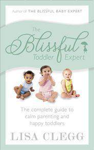 The Blissful Toddler Expert