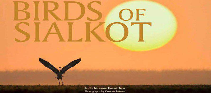 Birds of Sialkot