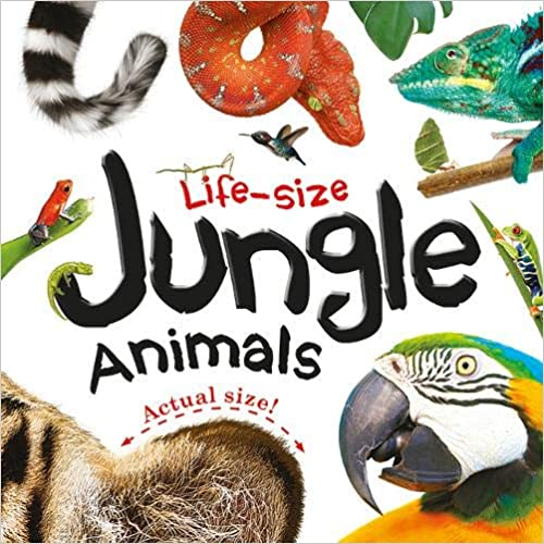 Life-size: Jungle Animals - Board book