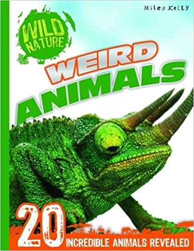 Weird Animals: Wild Nature - Paperback