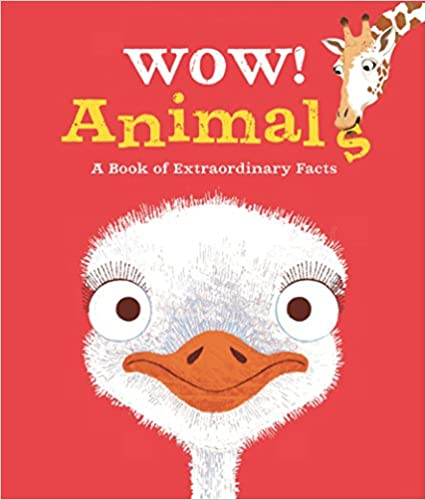 Wow! Animals - Paperback