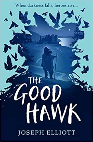 The Good Hawk  (Shadow Skye 1)  - Paperback