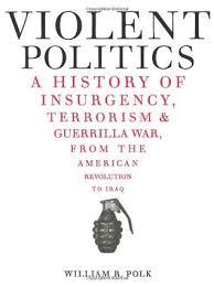 Violent Politic A History Of Insugency Terrorism & Guerrilla Warfare -
