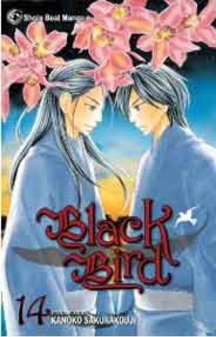 Black Bird Volume 14