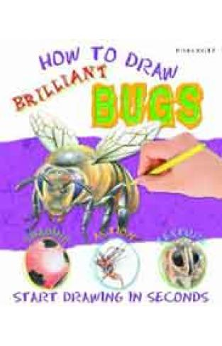 Brilliant Bugs How To Draw Miles Kelly