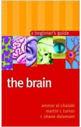 The Brain A Beginners guide