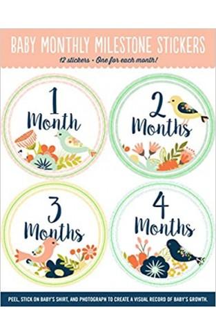 Baby Monthly Milestone Stickers - Paperback