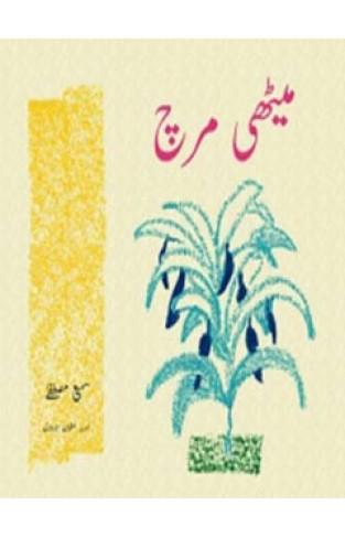Meethi Mirch  - Paperback