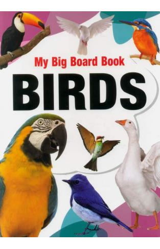 My Big Board Book Birds