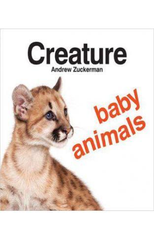 Creature Baby Animals - Board book