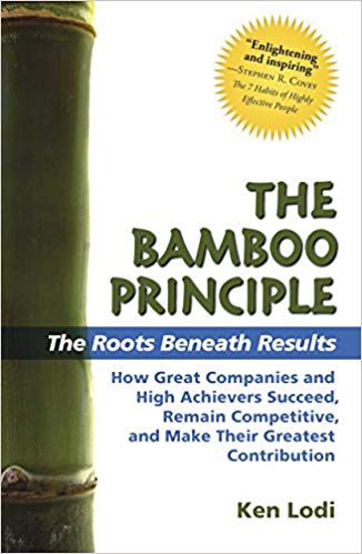 The Bamboo Principle The Roots Beneath Results
