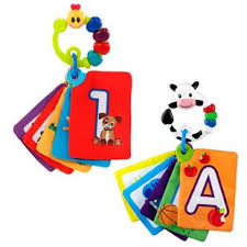 Playpals Flash Cards: First Words
