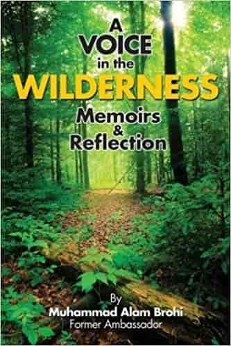 A Voice In The Wilderness Memoirs & Reflections