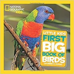 Little Kids First Big Book of Birds (First Big Book)