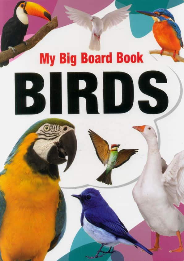 My Big Board Book Birds