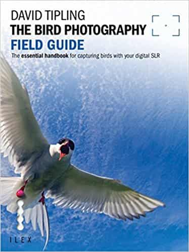 The Bird Photography Field Guide (Photographer's Field Guide)
