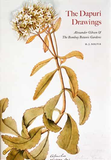 The Dapuri Drawings: Alexander Gibson and the Bombay Botanic Gardens