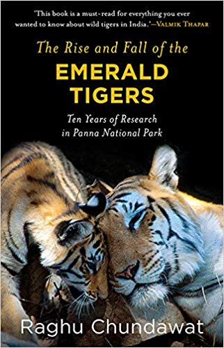The Rise and Fall of the Emerald Tigers