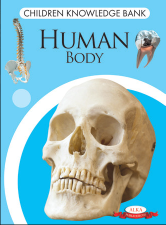 Children Knowledge Bank - Human Body