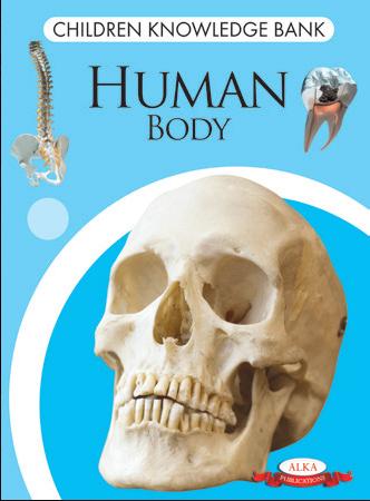 Children Knowledge Bank - Human Body