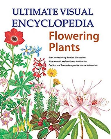 Ultimate Visual Encyclopedia Flowering Plants
