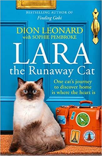 Lara The Runaway Cat