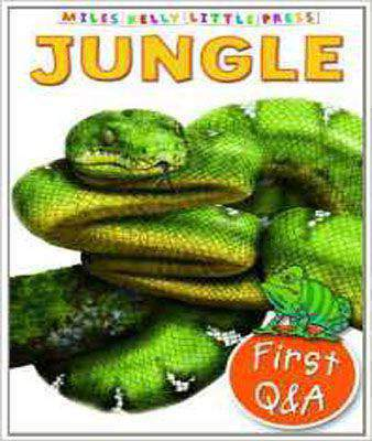 First Q&A Jungle (Miles Kelly Little Press) (Little Questions and Answers)