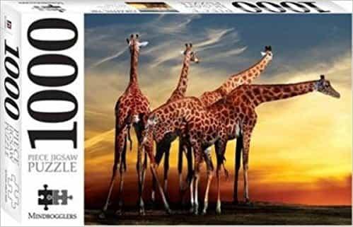 Giraffes, Open-air Zoo France 1000 Piece Jigsaw (Mindbogglers Series 8)