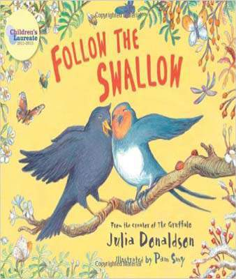 Follow the Swallow (Blue Bananas (Egmont Press)