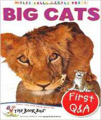 Big Cats (Little Press)