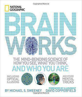 Brainworks: The Mind-bending Science of How You See, What You Think, and Who You Are OR A Journey to the Depths of Your Mind