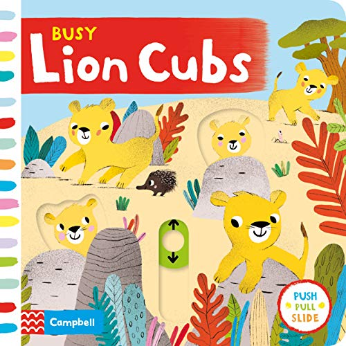 Busy Lion Cubs (board Books)