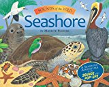 Sounds Of The Wild: Seashore (pledger Sounds)
