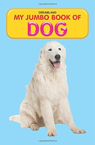 Dog (my Jumbo Books)