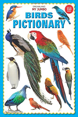 My Jumbo Birds Pictionary [paperback] [jan 01, 2014] Dreamland Publications