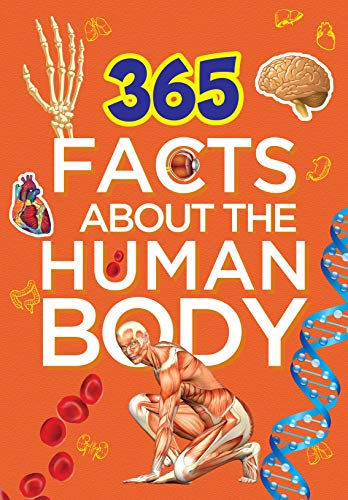 Om Books International 365 Facts About The Human Body