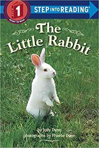 Little Rabbit (Step into Reading) (Step Into Reading: A Step 1 Book)