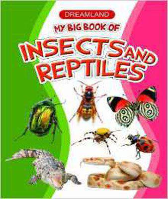 My Big Book Of Insects & Reptiles