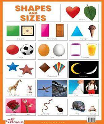 Shapes & Sizes -