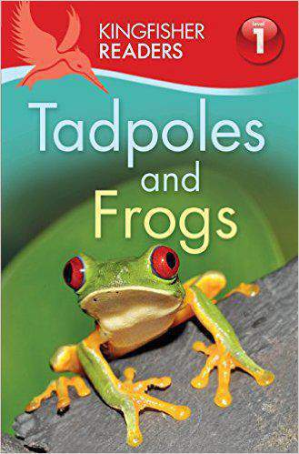 Kingfisher Readers Tadpoles and Frogs Level 1 Beginning to Read