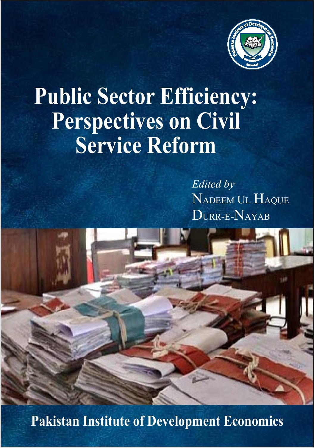 Public Sector Efficiency: Perspectives on civil service